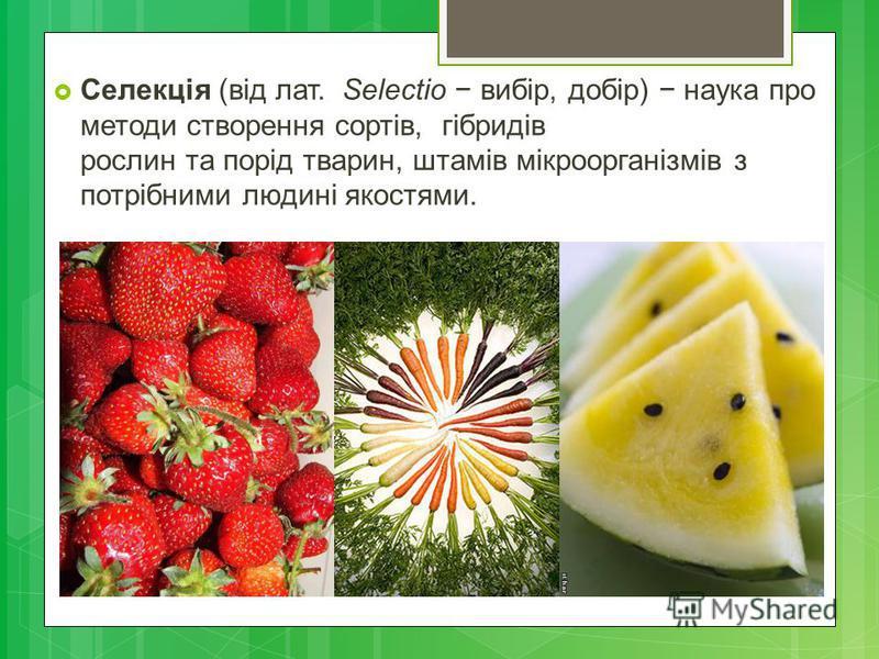 Селекція (від лат. Selectio вибір, добір) наука про методи створення сортів, гібридів рослин та порід тварин, штамів мікроорганізмів з потрібними людині якостями.