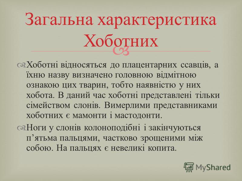 Домен : Ядерні (Eukaryota) Царство : Тварини (Metazoa) Тип : Хордові (Chordata) Інфратип : Хребетні (Vertebrata) Клас : Ссавці (Mammalia) Інфраклас : Плацентарні (Eutheria) Надряд : Афротерії (Afrotheria) Ряд : Хоботні (Proboscidea) Біологічна класиф