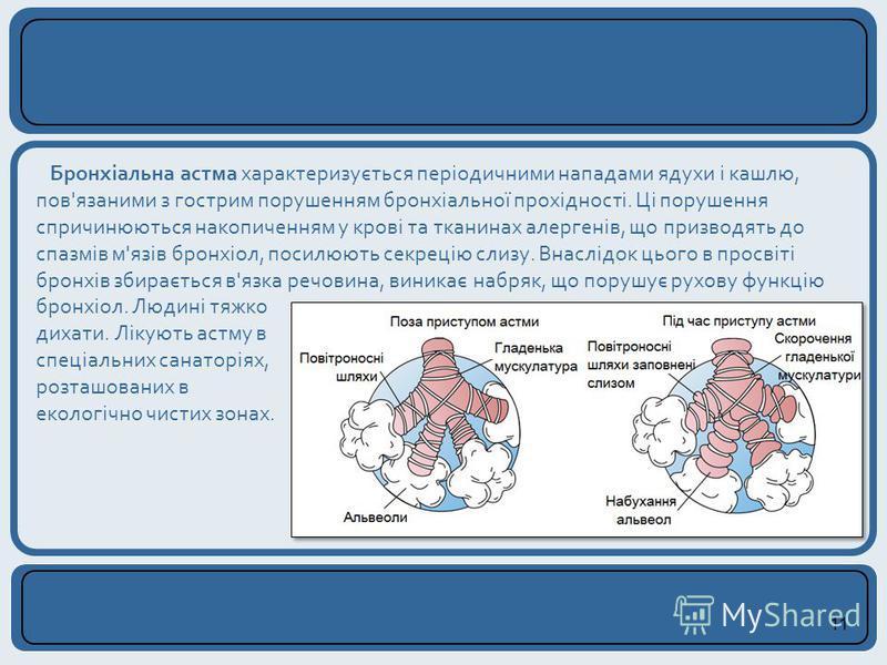 11 Бронхіальна астма характеризується періодичними нападами ядухи і кашлю, пов'язаними з гострим порушенням бронхіальної прохідності. Ці порушення спричинюються накопиченням у крові та тканинах алергенів, що призводять до спазмів м'язів бронхіол, пос