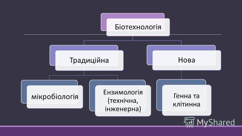 Біотехнологія Традиційна мікробіологія Ензимологія (технічна, інженерна) Нова Генна та клітинна