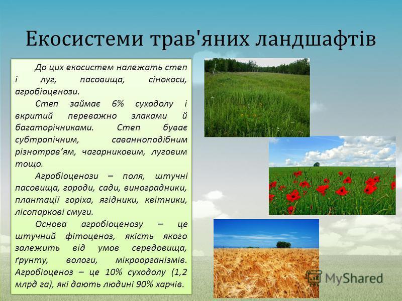 Екосистеми трав'яних ландшафтів До цих екосистем належать степ і луг, пасовища, сінокоси, агробіоценози. Степ займає 6% суходолу і вкритий переважно злаками й багаторічниками. Степ буває субтропічним, саванноподібним різнотравям, чагарниковим, лугови