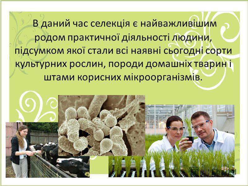 В даний час селекція є найважливішим родом практичної діяльності людини, підсумком якої стали всі наявні сьогодні сорти культурних рослин, породи домашніх тварин і штами корисних мікроорганізмів.