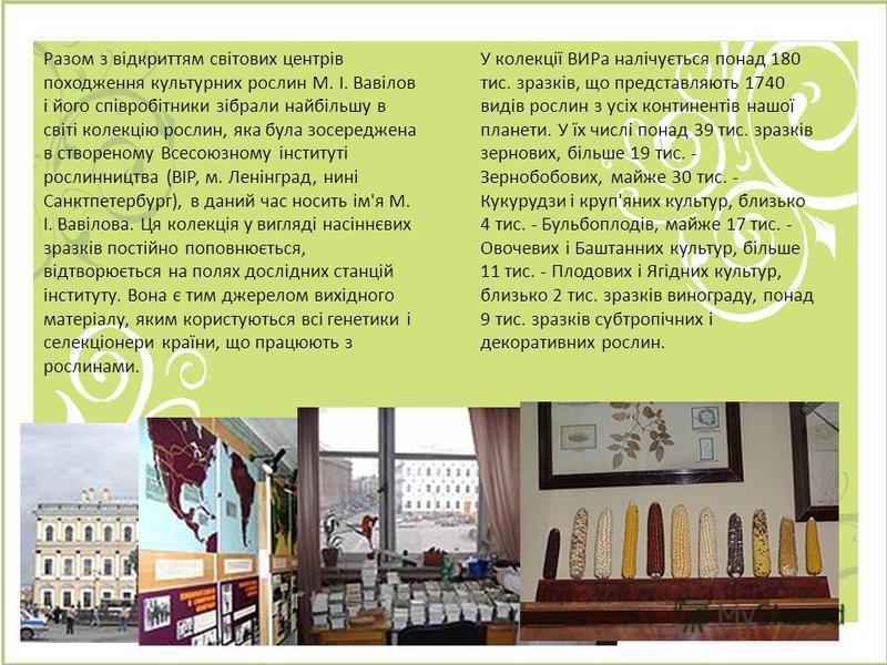 Разом з відкриттям світових центрів походження культурних рослин М. І. Вавілов і його співробітники зібрали найбільшу в світі колекцію рослин, яка була зосереджена в створеному Всесоюзному інституті рослинництва (ВІР, м. Ленінград, нині Санктпетербур
