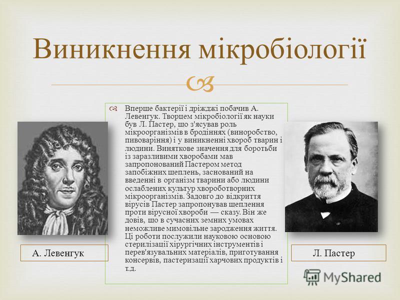 Вперше бактерії і дріжджі побачив А. Левенгук. Творцем мікробіології як науки був Л. Пастер, що з ' ясував роль мікроорганізмів в бродіннях ( виноробство, пивоваріння ) і у виникненні хвороб тварин і людини. Виняткове значення для боротьби із заразли
