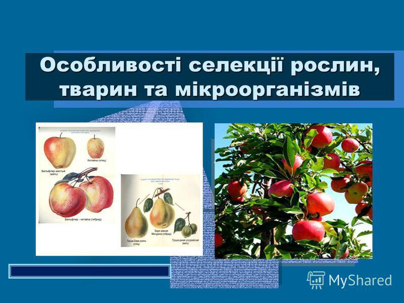 Особливості селекції рослин, тварин та мікроорганізмів