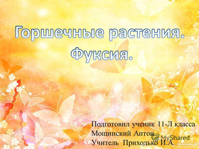 Подготовил ученик 11-Л класса Мощинский Антон Учитель Приходько И.А.