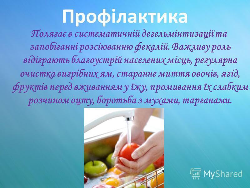 Профілактика Полягає в систематичній дегельмінтизації та запобіганні розсіюванню фекалій. Важливу роль відіграють благоустрій населених місць, регулярна очистка вигрібних ям, старанне миття овочів, ягід, фруктів перед вживанням у їжу, промивання їх с
