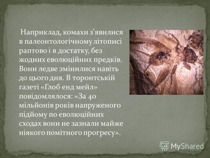 Наприклад, комахи з'явилися в палеонтологічному літописі раптово і в достатку, без жодних еволюційних предків. Вони ледве змінилися навіть до цього дня. В торонтській газеті «Глоб енд мейл» повідомлялося: «За 40 мільйонів років напруженого підйому по