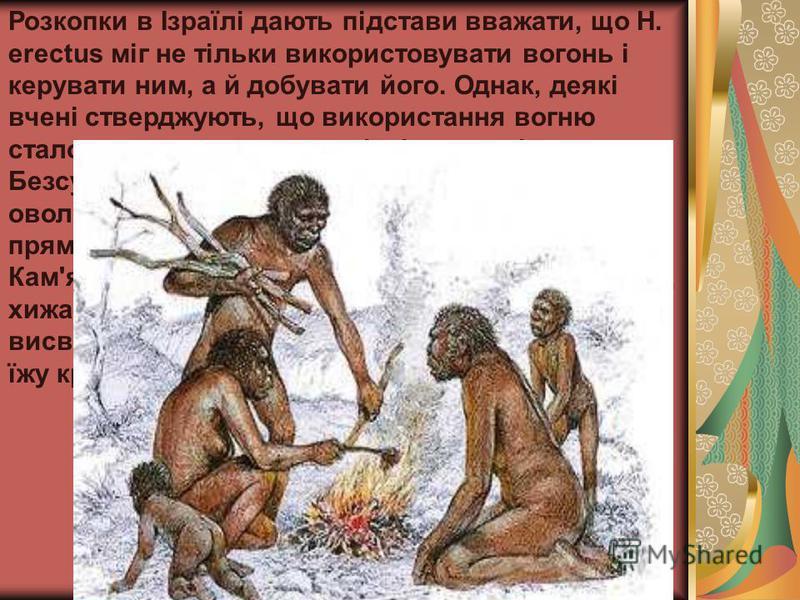 Розкопки в Ізраїлі дають підстави вважати, що H. erectus міг не тільки використовувати вогонь і керувати ним, а й добувати його. Однак, деякі вчені стверджують, що використання вогню стало типовим лише для пізніших видів людини. Безсумнівно, розвиток