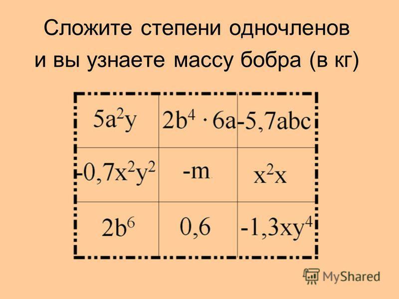 Сложите степени одночленов и вы узнаете массу бобра (в кг)