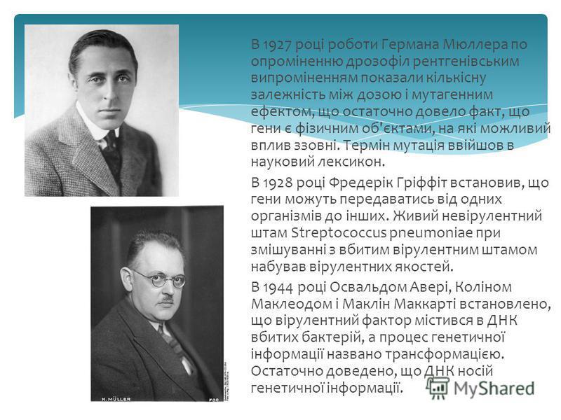 В 1927 році роботи Германа Мюллера по опроміненню дрозофіл рентгенівським випроміненням показали кількісну залежність між дозою і мутагенним ефектом, що остаточно довело факт, що гени є фізичним об'єктами, на які можливий вплив ззовні. Термін мутація