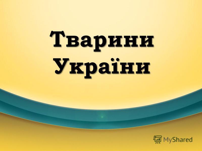 Тварини України