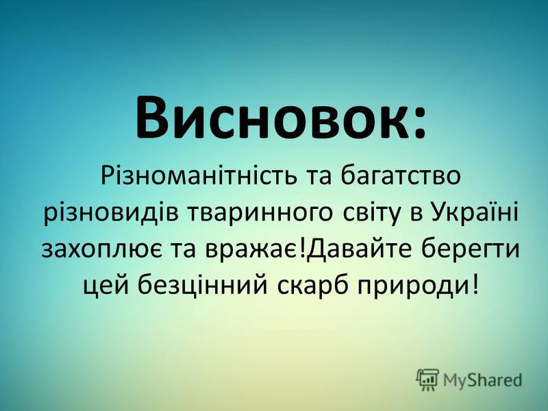 Висновок: Різноманітність та багатство різновидів тваринного світу в Україні захоплює та вражає!Давайте берегти цей безцінний скарб природи!