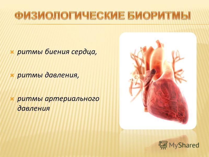 ритмы биения сердца, ритмы давления, ритмы артериального давления