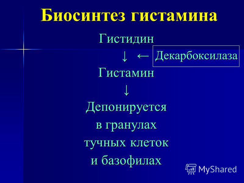 Биосинтез гистамина Гистидин Декарбоксилаза Декарбоксилаза ГистаминДепонируется в гранулах тучных клеток и базофилах