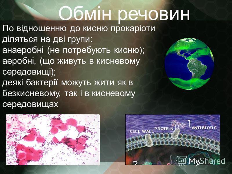 Обмін речовин По відношенню до кисню прокаріоти діляться на дві групи: анаеробні (не потребують кисню); аеробні, (що живуть в кисневому середовищі); деякі бактерії можуть жити як в безкисневому, так і в кисневому середовищах