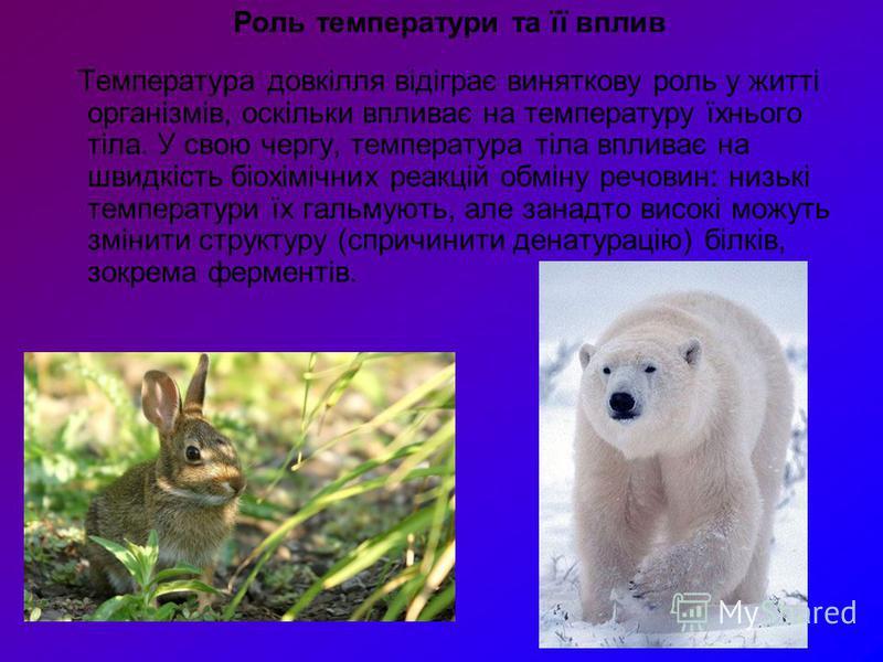 Роль температури та її вплив Температура довкілля відіграє виняткову роль у житті організмів, оскільки впливає на температуру їхнього тіла. У свою чергу, температура тіла впливає на швидкість біохімічних реакцій обміну речовин: низькі температури їх