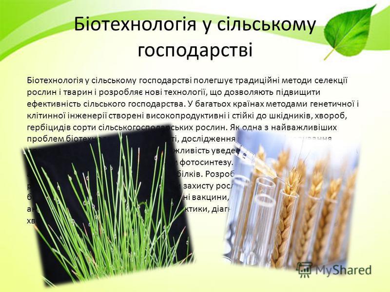 Біотехнологія у сільському господарстві Біотехнологія у сільському господарстві полегшує традиційні методи селекції рослин і тварин і розробляє нові технології, що дозволяють підвищити ефективність сільського господарства. У багатьох країнах методами