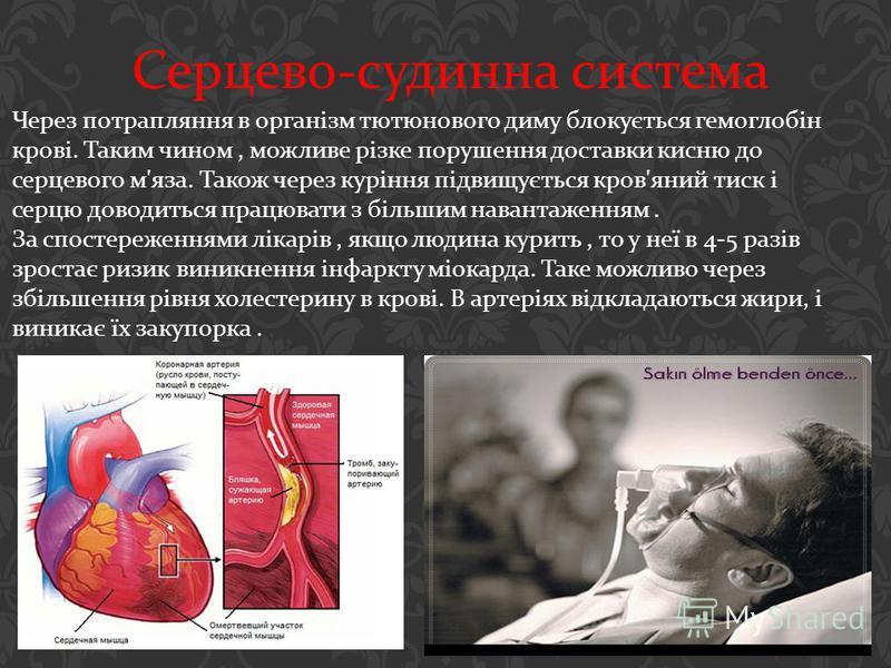 Серцево - судинна система Через потрапляння в організм тютюнового диму блокується гемоглобін крові. Таким чином, можливе різке порушення доставки кисню до серцевого м ' яза. Також через куріння підвищується кров ' яний тиск і серцю доводиться працюва