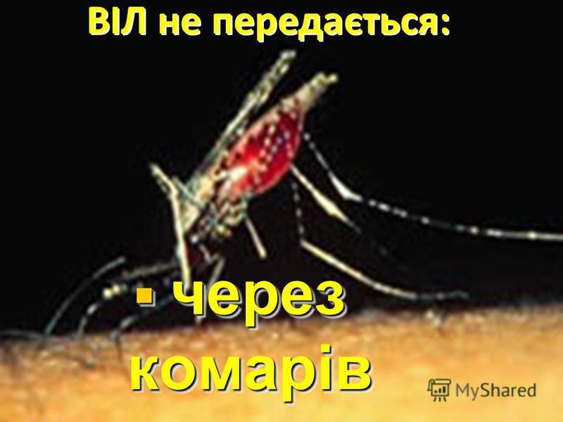 через комарів через комарів ВІЛ не передається:
