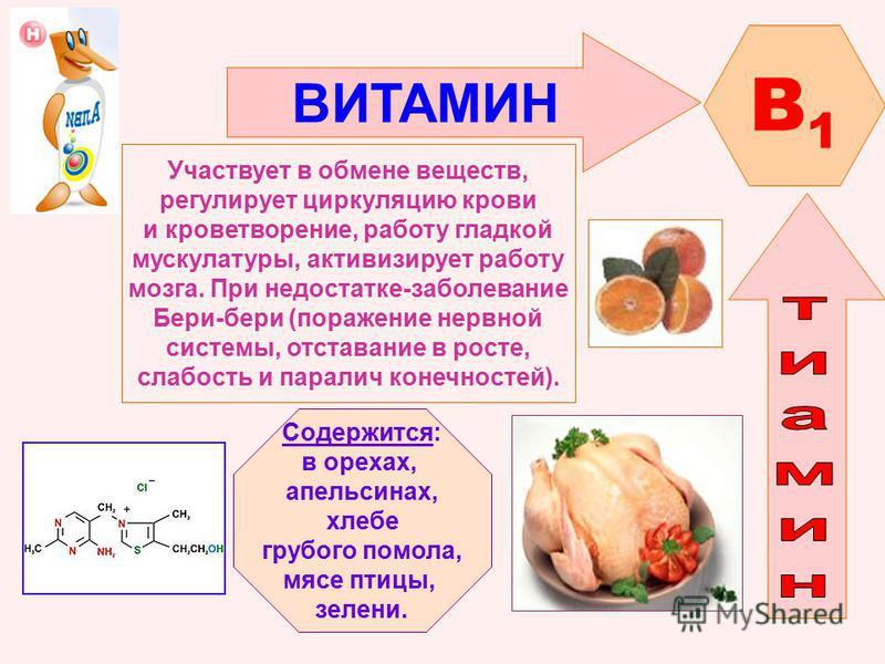 ВИТАМИН B1B1 Участвует в обмене веществ, регулирует циркуляцию крови и кроветворение, работу гладкой мускулатуры, активизирует работу мозга. При недостатке-заболевание Бери-бери (поражение нервной системы, отставание в росте, слабость и паралич конеч