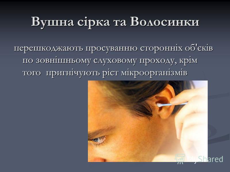 Вушна сірка та Волосинки перешкоджають просуванню сторонніх об'єків по зовнішньому слуховому проходу, крім того пригнічують ріст мікроорганізмів