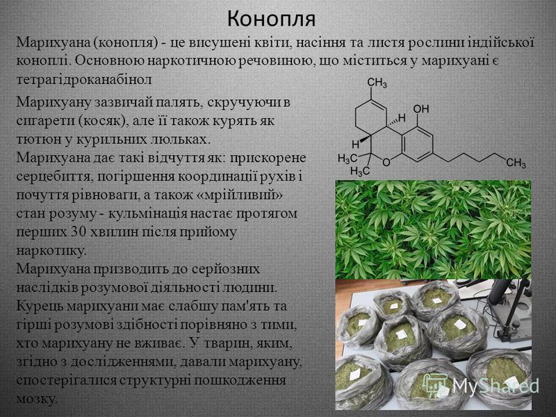 Кокаїн Кокаїн білий кристалічний порошок, з вигляду подібний на харчову соду. Потрапивши на язик, викликає відчуття оніміння. Кокаїн переважно вдихають («нюхають»), деколи вводять внутрішньовенно, попередньо розвівши водою. Деякі похідні кокаїну нагр