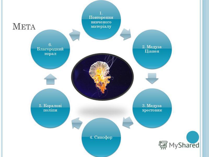 М ЕТА 1. Повторення вивченого матеріалу 2. Медуза Ціанея 3. Медуза хрестовик 4. Синофор 5. Коралові поліпи 6. Благородний корал
