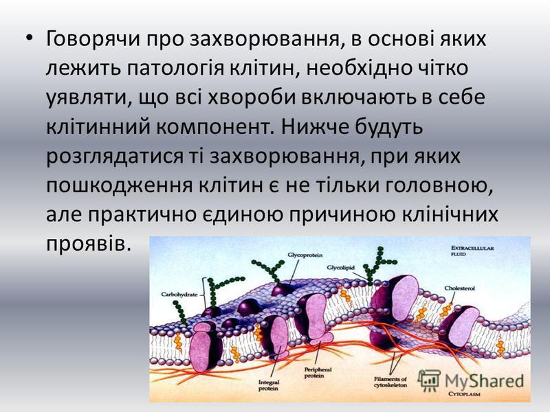 Говорячи про захворювання, в основі яких лежить патологія клітин, необхідно чітко уявляти, що всі хвороби включають в себе клітинний компонент. Нижче будуть розглядатися ті захворювання, при яких пошкодження клітин є не тільки головною, але практично
