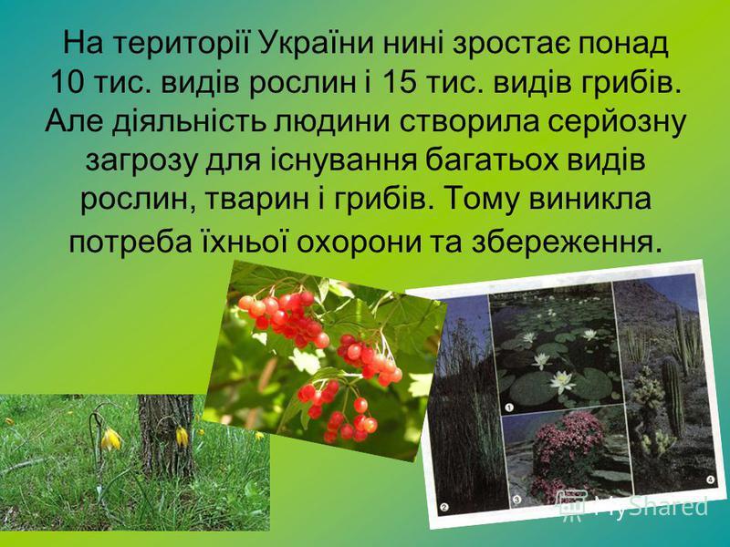 На території України нині зростає понад 10 тис. видів рослин і 15 тис. видів грибів. Але діяльність людини створила серйозну загрозу для існування багатьох видів рослин, тварин і грибів. Тому виникла потреба їхньої охорони та збереження.