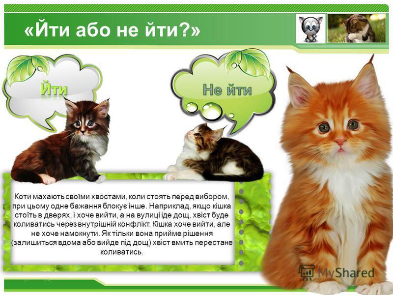 www.themegallery.com Не йти Коти махають своїми хвостами, коли стоять перед вибором, при цьому одне бажання блокує інше. Наприклад, якщо кішка стоїть в дверях, і хоче вийти, а на вулиці іде дощ, хвіст буде коливатись через внутрішній конфлікт. Кішка