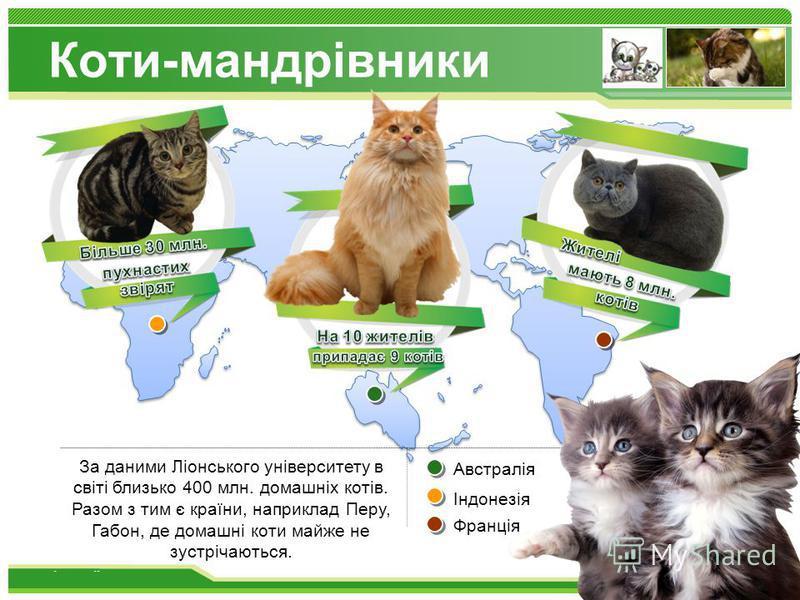 www.themegallery.com Коти-мандрівники За даними Ліонського університету в світі близько 400 млн. домашніх котів. Разом з тим є країни, наприклад Перу, Габон, де домашні коти майже не зустрічаються. Австралія Індонезія Франція
