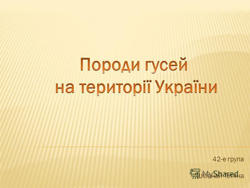 42-е група Шманай Тетяна