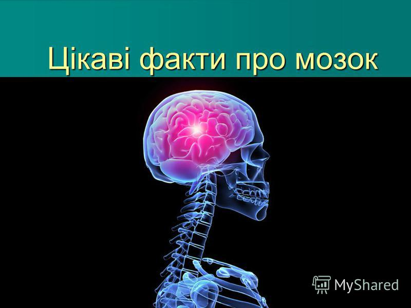 Цікаві факти про мозок