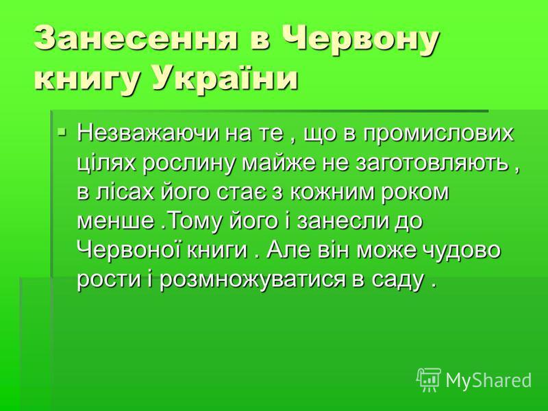 Занесення в Червону книгу України Незважаючи на те, що в промислових цілях рослину майже не заготовляють, в лісах його стає з кожним роком менше.Тому його і занесли до Червоної книги. Але він може чудово рости і розмножуватися в саду. Незважаючи на т