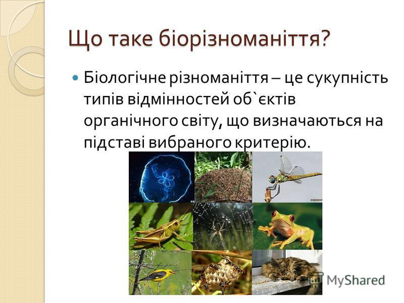 Що таке біорізноманіття ? Біологічне різноманіття – це сукупність типів відмінностей об ` єктів органічного світу, що визначаються на підставі вибраного критерію.