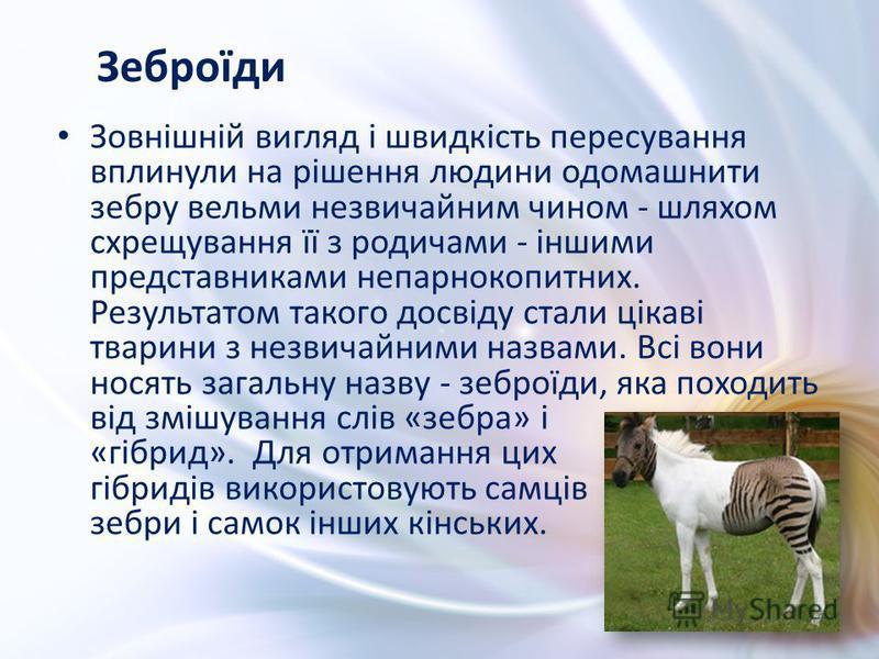 Зовнішній вигляд і швидкість пересування вплинули на рішення людини одомашнити зебру вельми незвичайним чином - шляхом схрещування її з родичами - іншими представниками непарнокопитних. Результатом такого досвіду стали цікаві тварини з незвичайними н