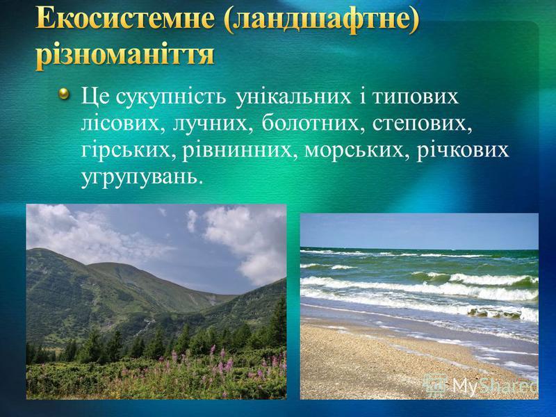 Це сукупність унікальних і типових лісових, лучних, болотних, степових, гірських, рівнинних, морських, річкових угрупувань.