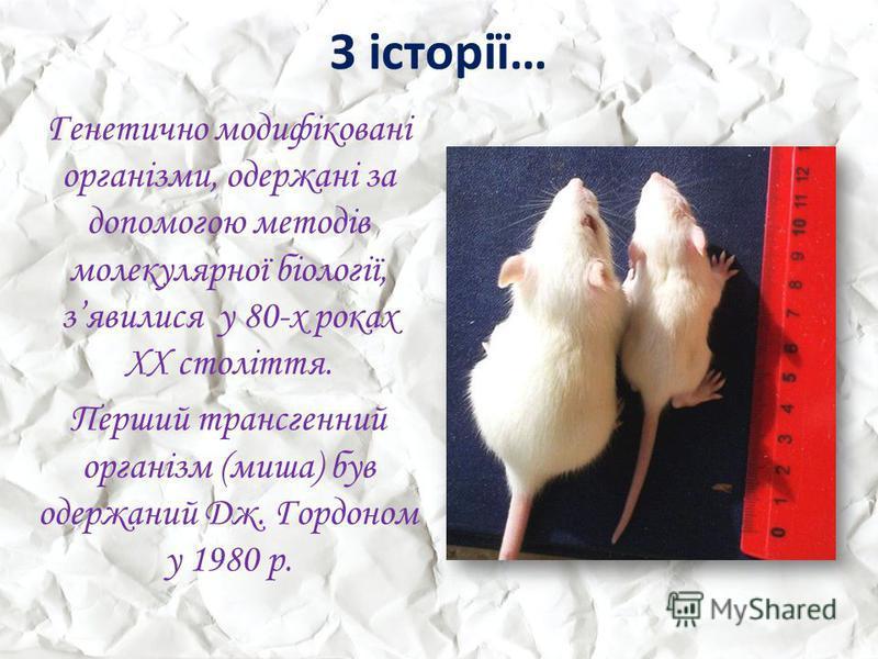 З історії… Генетично модифіковані організми, одержані за допомогою методів молекулярної біології, зявилися у 80-х роках ХХ століття. Перший трансгенний організм (миша) був одержаний Дж. Гордоном у 1980 р.