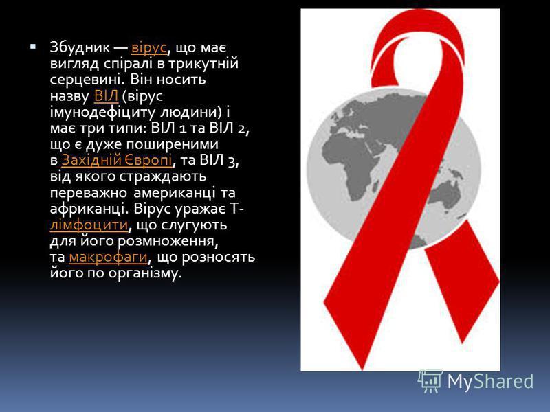 Збудник вірус, що має вигляд спіралі в трикутній серцевині. Він носить назву ВІЛ (вірус імунодефіциту людини) і має три типи: ВІЛ 1 та ВІЛ 2, що є дуже поширеними в Західній Європі, та ВІЛ 3, від якого страждають переважно американці та африканці. Ві