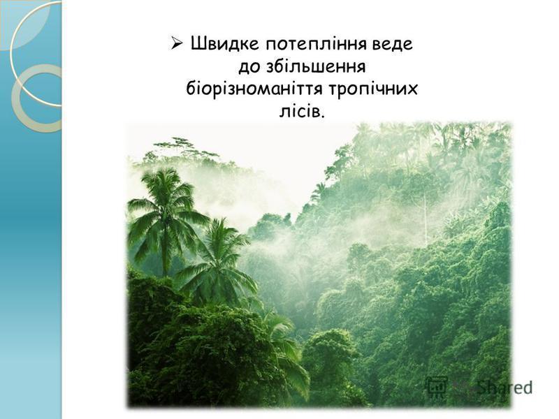 Швидке потепління веде до збільшення біорізноманіття тропічних лісів.