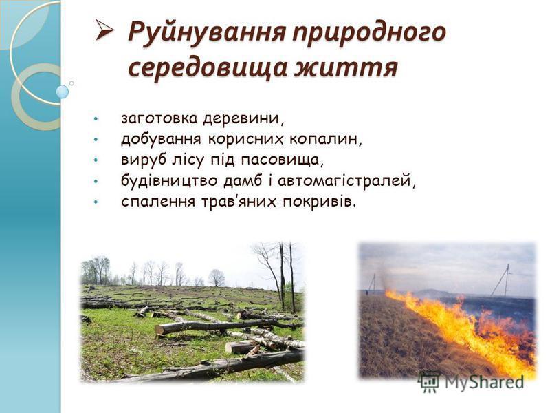 Руйнування природного середовища життя Руйнування природного середовища життя заготовка деревини, добування корисних копалин, вируб лісу під пасовища, будівництво дамб і автомагістралей, спалення травяних покривів.
