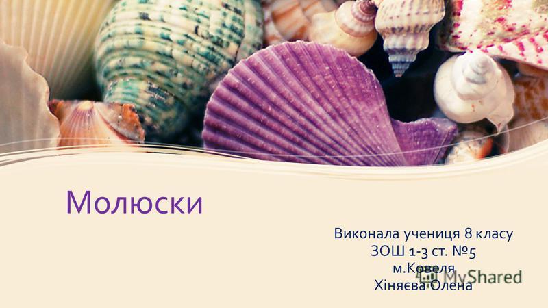 Молюски Виконала учениця 8 класу ЗОШ 1-3 ст. 5 м.Ковеля Хіняєва Олена