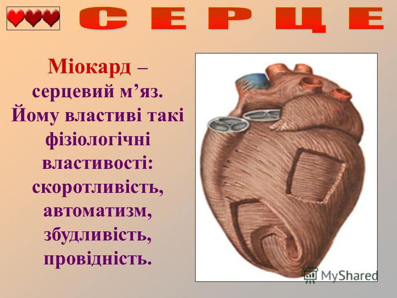 Міокард – серцевий мяз. Йому властиві такі фізіологічні властивості: скоротливість, автоматизм, збудливість, провідність.