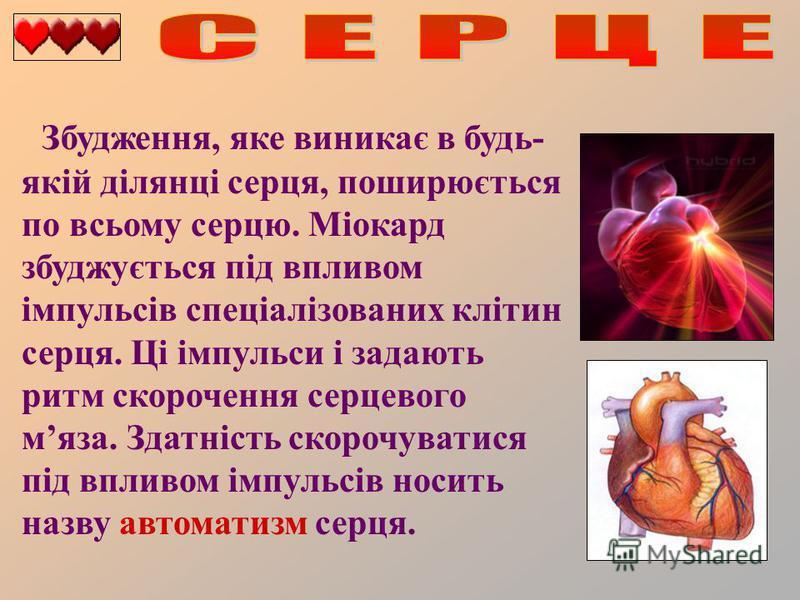 Збудження, яке виникає в будь- якій ділянці серця, поширюється по всьому серцю. Міокард збуджується під впливом імпульсів спеціалізованих клітин серця. Ці імпульси і задають ритм скорочення серцевого мяза. Здатність скорочуватися під впливом імпульсі