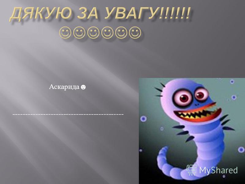 Аскарида --------------------------------------------