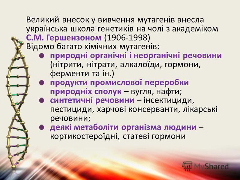 Великий внесок у вивчення мутагенів внесла українська школа генетиків на чолі з академіком С.М. Гершензоном (1906-1998) Відомо багато хімічних мутагенів: природні органічні і неорганічні речовини (нітрити, нітрати, алкалоїди, гормони, ферменти та ін.