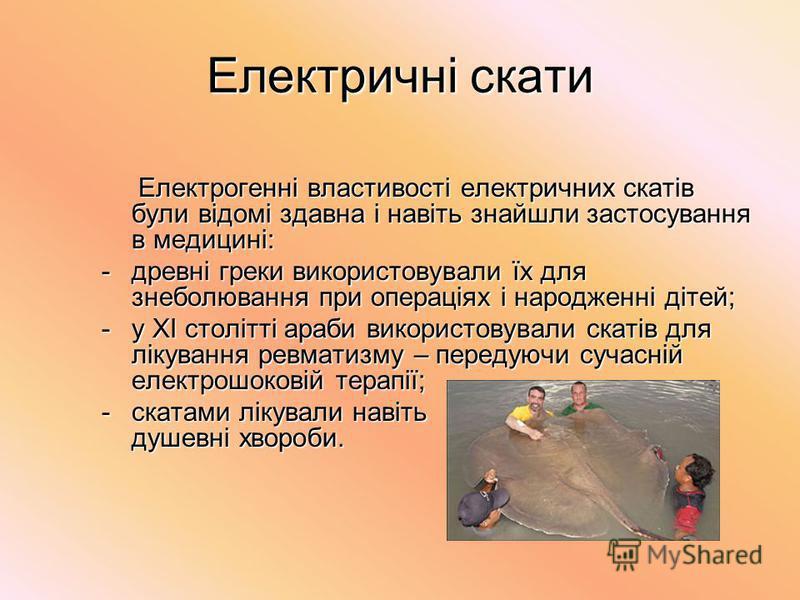 Електричні скати Електрогенні властивості електричних скатів були відомі здавна і навіть знайшли застосування в медицині: Електрогенні властивості електричних скатів були відомі здавна і навіть знайшли застосування в медицині: -древні греки використо