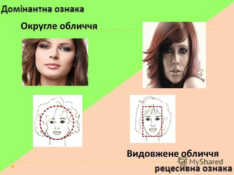 Округле обличчя Видовжене обличчя