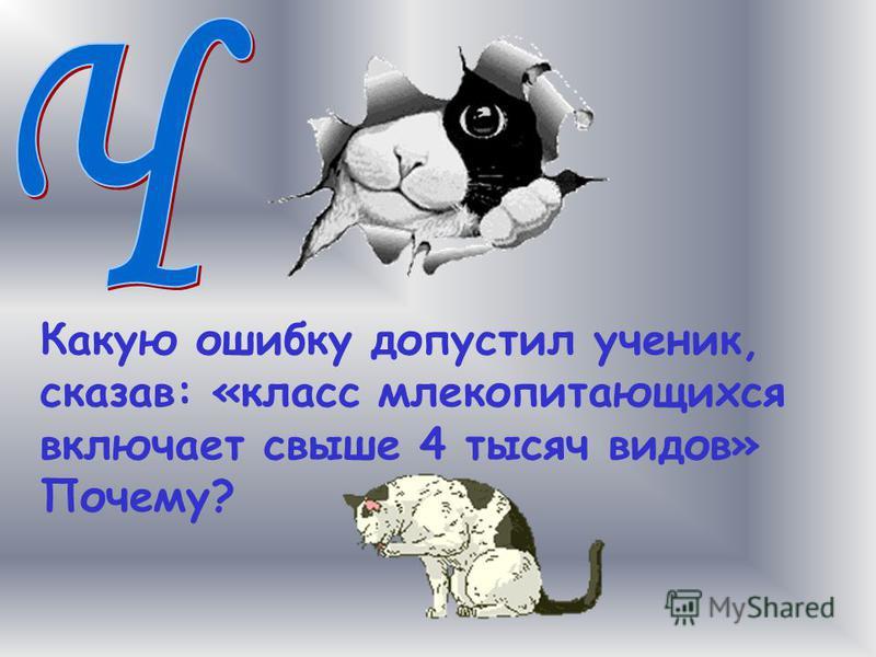 Какую ошибку допустил ученик, сказав: «класс млекопитающихся включает свыше 4 тысяч видов» Почему?